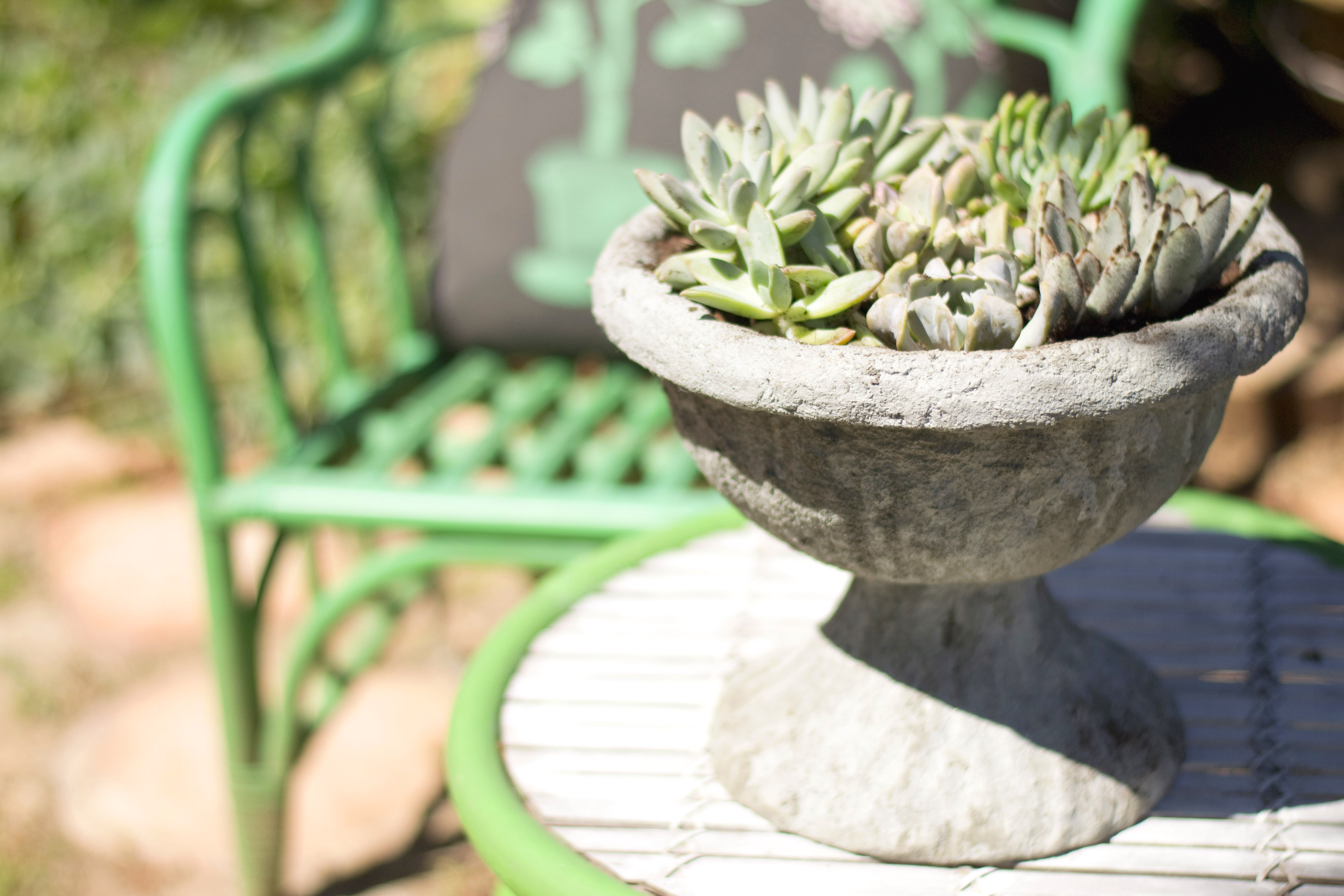 Cool DIY Cement Planter