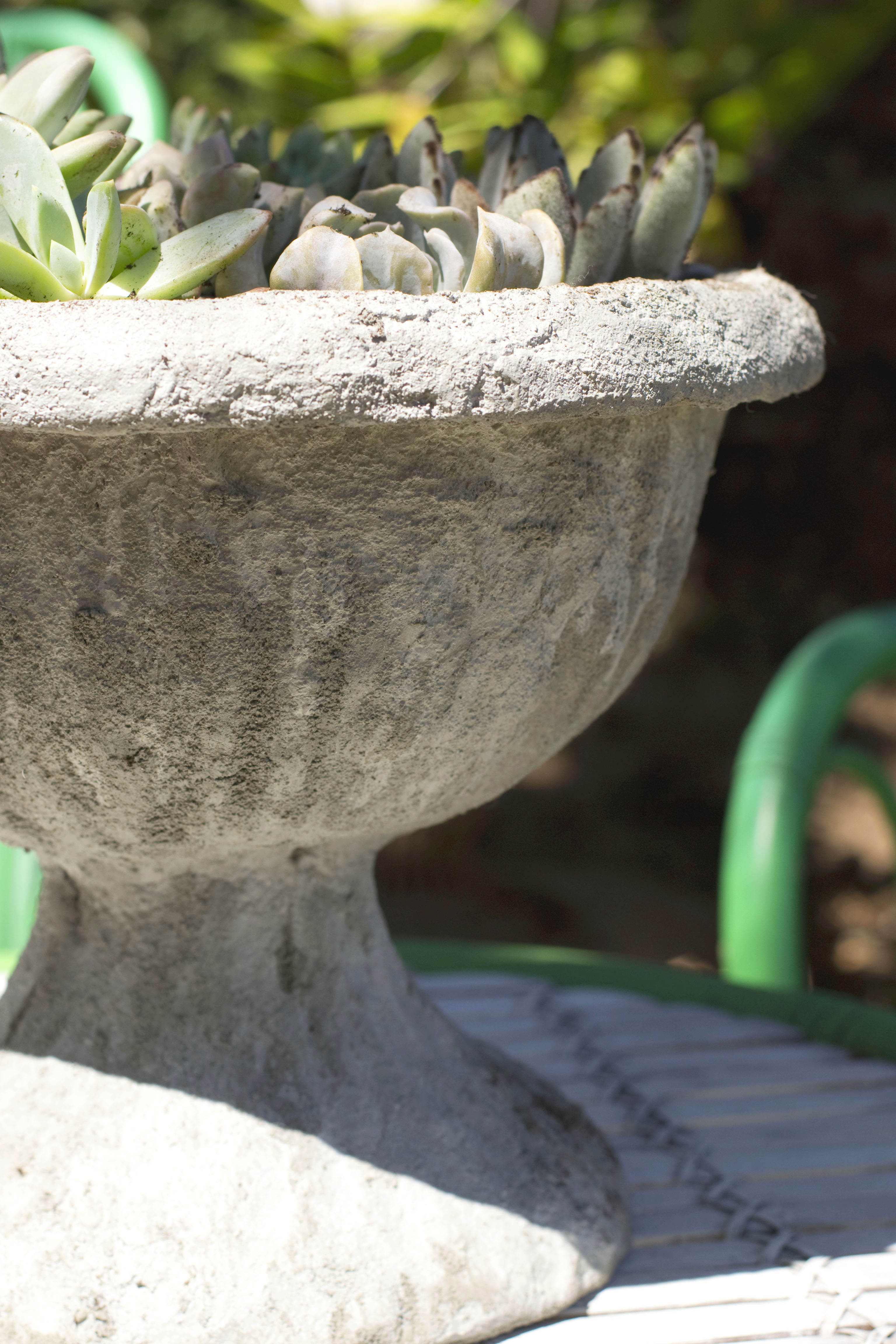 DIY Cement Planter Close Up
