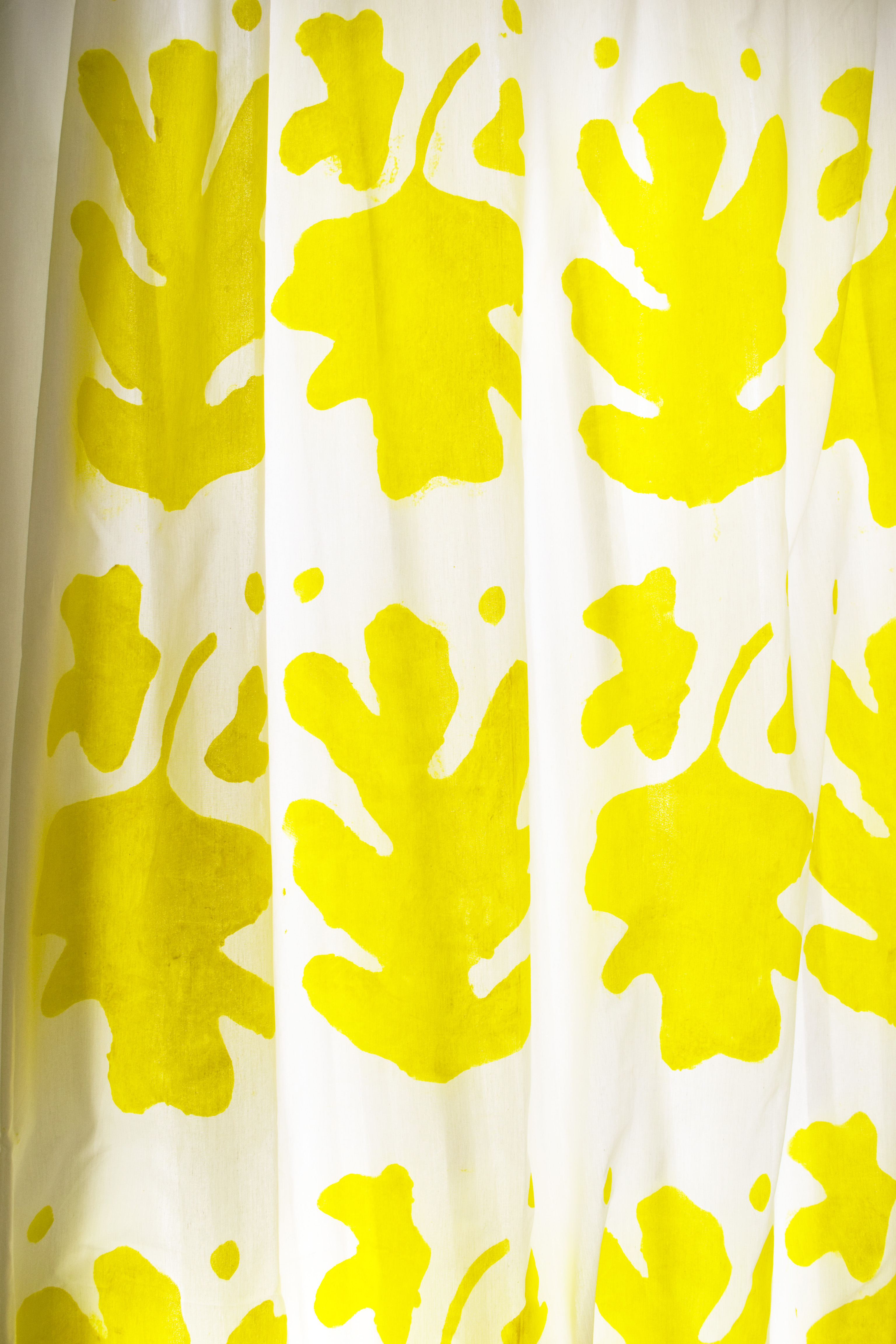 DIY Close Up Painted Curtain Stencil